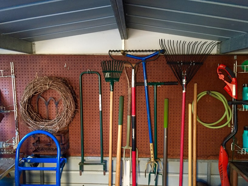 Tools Every Gardener Should Have in Their Garden Shed
