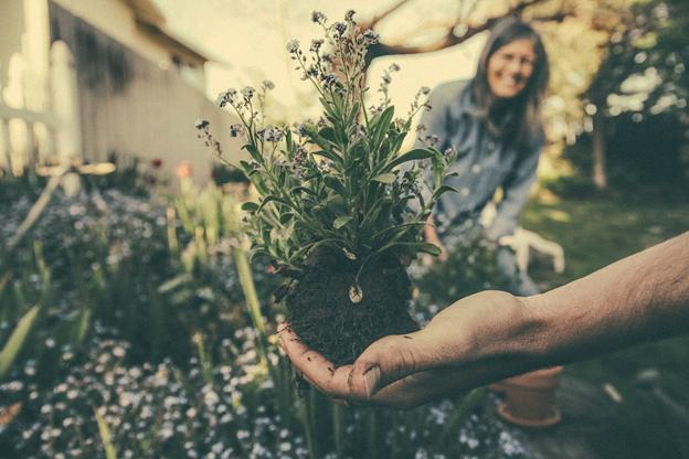 Gardening And Landscaping: Top 5 Ways To Make It Simple