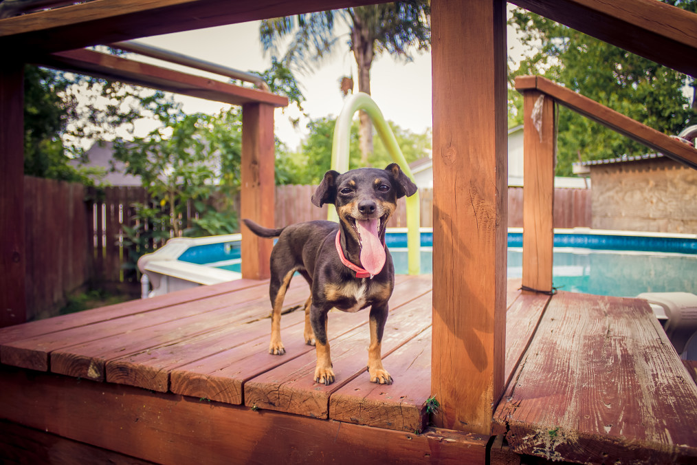 Maximizing the Space on Your Tiny Home Deck